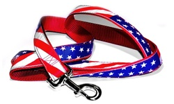 American Patriotic Flag Leash - Red/White/Blue