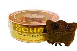 Giant Microbes Scum Biddulphia Petri Dish Science Kit