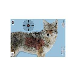 "16.5"" x 24"" Pregame Coyote Splattering Target Target targets"