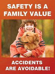 "Accuform Signs PST164 Safety Awareness Poster, ""SAFETY IS A FAMILY VALUE - ACCIDENTS ARE AVOIDABLE!"", 24"" Length x 18"" Width, Laminated Flexible Plastic"