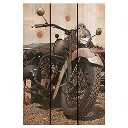 Gizaun Art Classic Ride Yard Art, 16 by 24-Inch