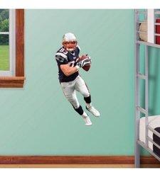Fathead NFL Houston Texans Andre Johnson Junior Wall Graphic
