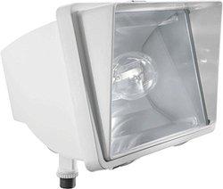 RAB Lighting FF35W/PC Future Flood 35W HPS 120V NPF Lamp, White