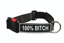 Dean & Tyler Nylon Patch Dog Collar - Black - Size: Large