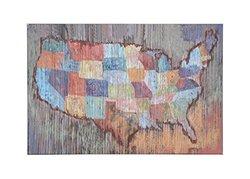 Creative Co-Op USA Map Wall Decor Art (DA4911)