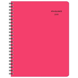 AT-A-GLANCE Professional Weekly / Monthly Planner 2016, 8.5 x 11 Inches, Whoopsie Daisy (155-905)