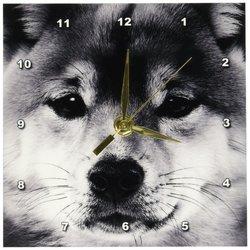 3d Rose Shiba Inn 6 by 6-Inch Desk Clock - Grey Wolf