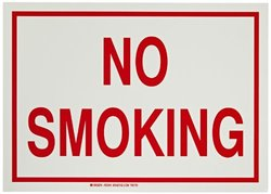 """Brady 10""""x14"""" Polyester No Smoking Glow-In-The-Dark Fire And Exit Sign"""