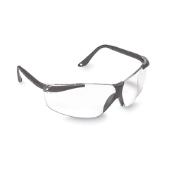 Aearo Unisex Antifog Safety Glasses w/ Adjustable Temple - Black/Clear