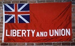 RFCO 3'x5' Liberty and Union Taunton Embroidered Sewn 100% Cotton Flag