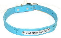 "Ark Survivor Series 3/4"" x 20"" Collar with Engraved Plates - Aqua"