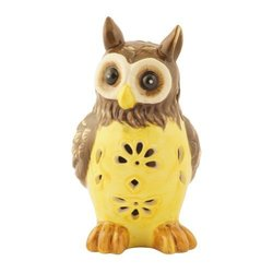 Flipo Solar Illuminated Color Changing Solar Light in Owl Ceramic Figurine