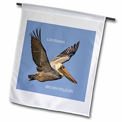 3dRose fl_50937_1 Garden Flag, 12 by 18-Inch, State Bird of Louisiana Brown Pelican