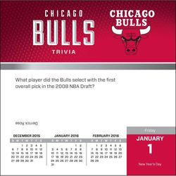 NBA Turner Chicago Bulls 2016 Hardback Desk Calendar