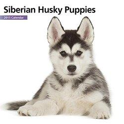 Magnet & Steel Siberian Husky 2015 Mini Wall Calendar