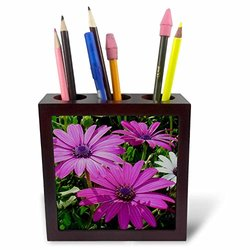 3dRose ph_17666_1 Flowers African Daisy-Tile Pen Holder, 5-Inch