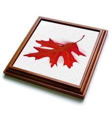 "3dRose trv_36766_1 Floating Red Leaf Trivet with Ceramic Tile, 8 by 8"", Brown"