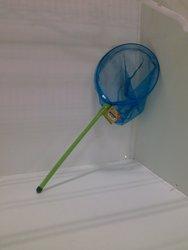 Bamboo Bug Net - Green/Blue
