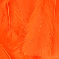 Touch of Nature 38027 Turkey Flats, 14 grams, Orange