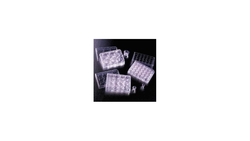 BD Falcon Translucent Polyethylene Terephthalate Cell Culture Insert 48Cs