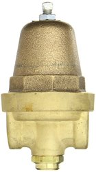 Cash Valve Brass Pressure Regulator - Size 1/4""