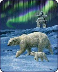 Northern Lights Officially Licensed Medium Weight Mink Blanket