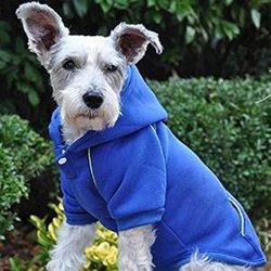 Doggie Design Sport Hoodie - Nautical Blue M