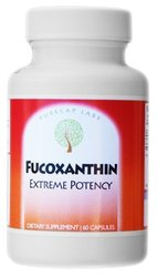 Fucoxanthin, Extreme Potency, 2 Month Supply, By PureCap Labs