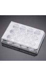 BD Falcon Multiwell Cell Culture Plates 3.5mL Volume Case of 50