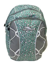 High Sierra Chirp Backpack (Mint Leopard)