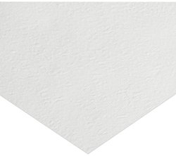Whatman 1822-849 Glass Microfiber Binder Free Filter Sheet Pack of 50