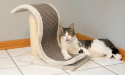 Cat Furniture: Scratch And Slide Wave Scratcher W/sisal Post - Grey