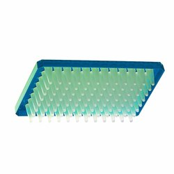 Eppendorf Polypropylene Twin tec Real Time PCR Plate - Blue Border