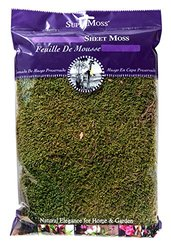 Super Moss Natural Dried Beautiful Green Moss Sheet - 8-Ounce