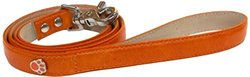 Bluemax Genuine Leather Vintage Cow Dog Collar with Paw Stud, 1-Inch by 4-Feet, Orange