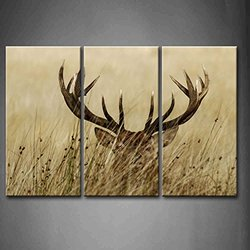 Firstwallart 3 Panel Wall Art - Deer Stag with Long Antler Painting