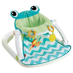 Fisher-Price Sit Me Up Floor Seat (Citrus Frog)