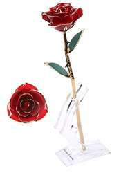 DuraRose Authentic Rosewith Long Stem Dipped in 24k Gold - Best Gift