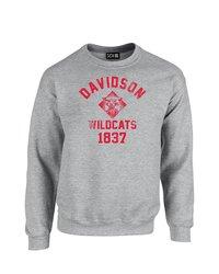 SDI NCAA Davidson Wildcats Mascot Block Neck Sweatshirt - Grey - Size: M