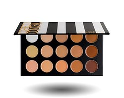 15 Full Coverage Cream Based Professional Concealer Palette Kit