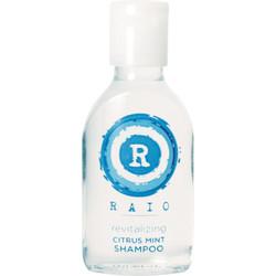 Raio Shampoo Bottle - Case Of 144 - 22ml (201-RAIO)