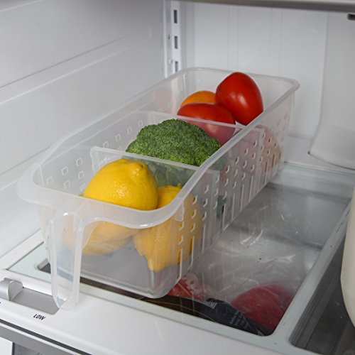 Perfect Fridge Vegetable Storage Container Check Back Soon BLINQ