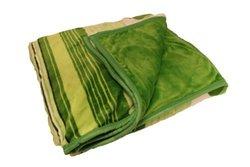 ArchAngel Micro-Plush 2ply Blanket - Green Grass - Size: Queen (5942840)
