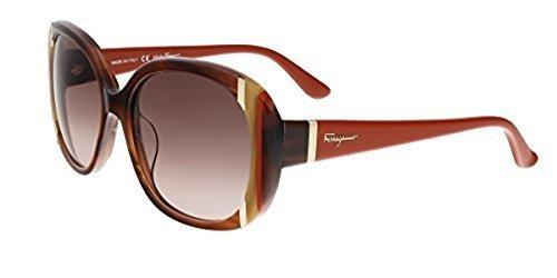 1e7146eec69 Salvatore Ferragamo Women s Sunglasses - Brown Horn (SF674 S 217 ...