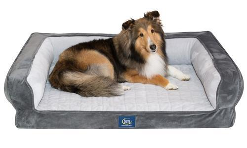 Stupendous Serta Ortho Foam Couch Style Pet Bed Gray Size Xl Check Back Soon Bralicious Painted Fabric Chair Ideas Braliciousco