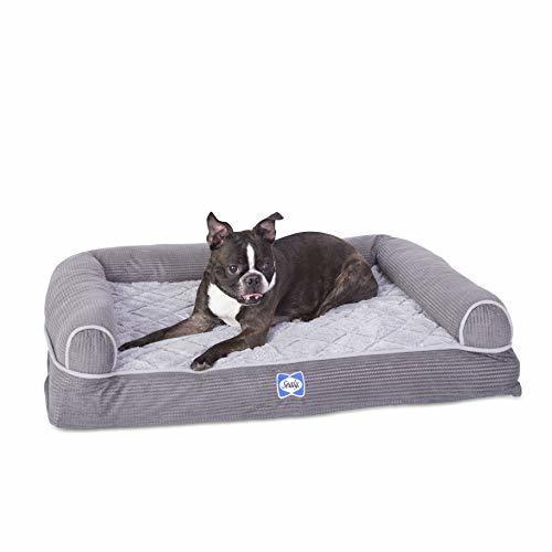 Awe Inspiring Sealy Orthopedic Foam Couch Style Dog Bed Gray Size Small Check Back Soon Bralicious Painted Fabric Chair Ideas Braliciousco