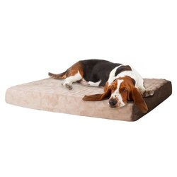 PAW Memory Foam Dog Bed With Removable Cover: Large